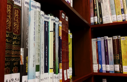 Books in the IBP Reading Room at the GU-Q Library